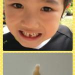 collage-1464321976946.jpg